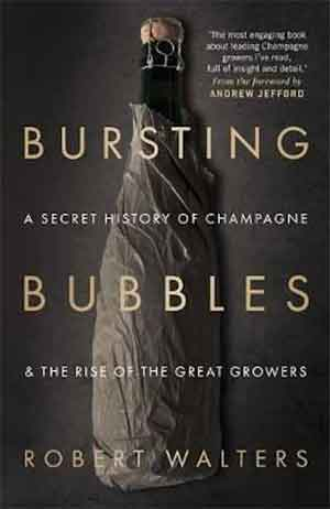Boek over Campagne Robert Walters Bursting Bubbles